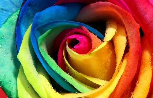 Лечебное действие цвета